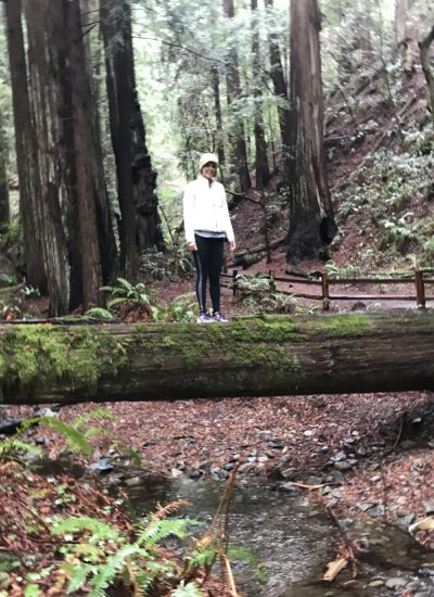 http://www.evergreen-therapy.com/wp-content/uploads/2018/01/DinMuirWoods-400x550.jpg